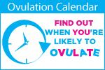 ovulation2
